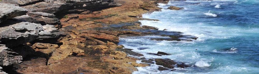 Keller Williams Realty- Gold Coast